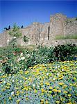 Espagne, Andalousie, Malaga, forteresse de l'Alcazaba.