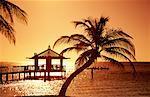Sunset, Bay Island, Honduras