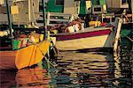 Chypre, Paphos, le port.