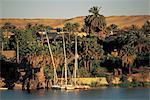 Egypt,  Assouan, elephantine island.