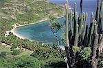 Français des Antilles, Guadeloupe, Les Saintes, plage de Dompierre.