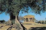 Italy, Sicily, Agrigento, Concord temple