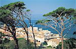 France, Provence, Saint Tropez, la baie et le village