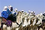 Algérie, Tassili n'Ajjer, festival Touareg, course de chameaux