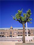 Spain, Barcelona, the olympic stadium and an orange tree