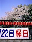 Temple Shinto au Japon, Kyoto, au printemps