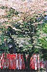 Temple de shintoïst au Japon, Tokyo,