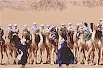 Algérie, Tassili Ajjer, Djanet, camel race au cours de la Sebiba (festival Touareg)