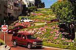 Low angle view of Lombard Street, San Francisco, California, USA