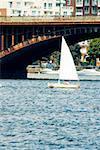 Sailboats in the river, Boston, Massachusetts, USA