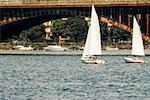 Sail boats in water, Boston, Massachusetts, USA