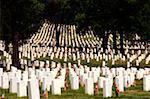 Tombstones in a cemetery, Arlington National Cemetery, Arlington, Virginia, USA