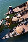 Women on Riverboats, De Vong River, Hoi An, Vietnam