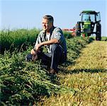 Agriculteur à la recherche sur les cultures