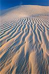 Dunes de sable, le Parc National de Nambung, Western Australia, Australie