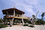 Tree Hut on Beach, Cayman Islands