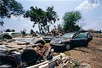 Hurricane Damage, New Orleans, Louisiana, USA