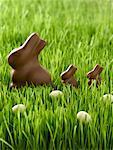 Lapins et des oeufs au chocolat