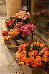 Roses en dehors de paris fleuriste