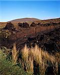 Overview of Landscape, Achill Island, Ireland