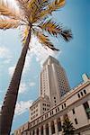 Rathaus von Los Angeles, Los Angeles, Kalifornien, USA