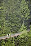 Canopy Walkway, Capilano, British Columbia, Canada