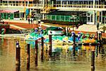 Dragon boats docked at a harbor, Inner Harbor, Baltimore, Maryland USA