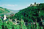 High angle of houses and lush foliage, Bacharach, Rhine River, Germany
