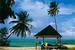 Vue arrière de deux personnes dans un pique-nique abri, Pigeon Point, Tobago, Caraïbes