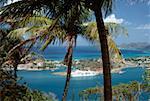 Un paysage exotique, Sainte-Lucie
