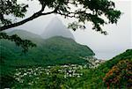 Vue grand angle sur un volcan befogged, Sainte-Lucie