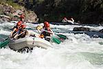 White Water Rafting, rivière Tuolumne, California, USA