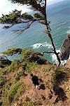 Boy Walking Along Edge of Cliff, Oregon, USA