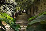 Escalier entre les maisons, lac majeur, Italie