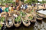 Dugout Boats at Market, Antainambalana River, Maroantsetra, Madagascar
