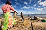 Family Pulling in Fishing Nets, Antongil Bay, Maroantsetra, Madagascar