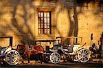 Horse-drawn Carriages, Guadalajara, Mexico