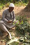 Portrait of Gardener, Kitchener's Island, Aswan, Egypt