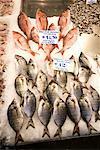 Les poissons exposés au marché, Athènes, Grèce