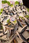 Affichage de poissons au marché, Athènes, Grèce