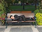 Man Sleeping on Park Bench