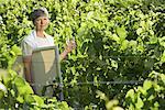 Frau mit Malerei Supplies, stehend im Weinberg