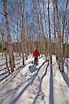 Schneeschuhwandern in Killarney Provincial Park, Kanada