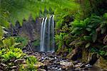 Hopetoun Falls, Otway National Park, Great Ocean Road, Victoria, Australia