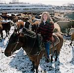 Woman on Horseback with Cattle, Edmonton, Alberta