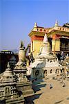 Pigeons en face d'un temple, le Temple aux singes, Katmandou, Népal