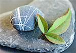 Galets et feuilles sur une pierre plate