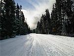 Route rurale en hiver