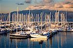 Boats, Jericho Beach Marina, Jericho Beach, Vancouver, British Columbia, Canada