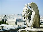 Gargoyle atop building
